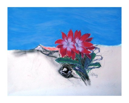 Christmas Cactus 2009, graphite and oil pastel on paper, 16x20.
